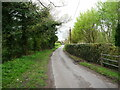 TG2632 : Barge Road a Quiet Lane by David Pashley