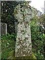SW9453 : Old Wayside Cross in St Stephen in Brannel parish by L Nott