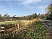 SP3173 : HS2 enabling works, Dalehouse Lane, Kenilworth (4) by Robin Stott