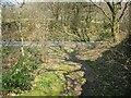 SD2786 : The Cumbria Way, Elm Lane near Long Lane by Adrian Taylor