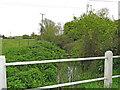 TM1762 : Upstream from the Kenton Road bridge by Adrian S Pye