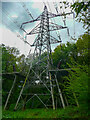 SE1122 : Electricity transmission tower in Elland Park Wood by Humphrey Bolton