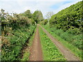 NY4435 : Enclosed track and footpath near to Skelton by Peter Wood
