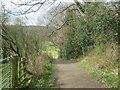 NZ1257 : Footpath towards Blackhall Mill by Les Hull