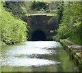 SP0478 : North portal of the Wast Hills Tunnel by Mat Fascione