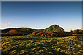 SH9170 : The highest part of the Fron-Gôch farmland by Andy Waddington