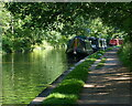 SJ6834 : Narrowboats moored along the Shropshire Union Canal by Mat Fascione