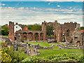 NU1241 : Lindisfarne Priory Ruins by David Dixon
