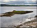 NU1241 : St Cuthbert's Island (Hobthrush Island) by David Dixon