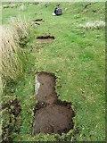 NZ6605 : Stone trod near Bagdale House 3 by T  Eyre