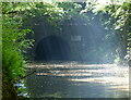 SP0170 : East portal of the Shortwood Tunnel by Mat Fascione