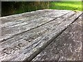 SK3015 : National Forest picnic table in plantation at Short Heath, Overseal, Derbyshire by Alan Paxton