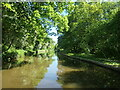 SJ5778 : Trent & Mersey Canal, near Longacre Wood by Christine Johnstone