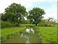 SP2556 : Charlecote Estate - River Dene by Rob Farrow