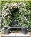 SP5077 : Brownsover Hall Hotel - Honeysuckle seat by Rob Farrow