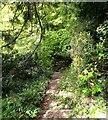 SP5077 : Brownsover Hall Hotel - Path into garden by Rob Farrow