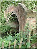 SP5077 : Brownsover Hall Hotel - Bridge over Brownsover Arm by Rob Farrow