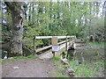 ST5060 : Keeping a distance on a bridge by Neil Owen