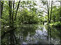 SX8274 : Duck pond at Trago Mills by Steve Daniels