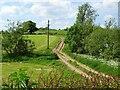 SK2943 : Rutted farm track crossing a stream by Ian Calderwood
