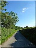 TQ4838 : Beech Green Lane by Simon Carey