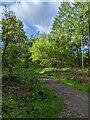 TF0820 : Southbound path by Bob Harvey