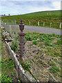HY3413 : Cast iron fence post by Mick Garratt