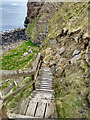 HY5908 : Landslip on the steps to the Brough of Deerness by Mick Garratt