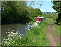 SP0374 : Narrowboat moored along the Worcester and Birmingham Canal by Mat Fascione