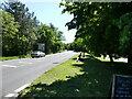 TG2730 : South on B1145 North Walsham By-Pass by David Pashley