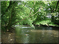 SS8979 : The River Ogmore at Craig-y-Parcau Local Nature Reserve by eswales