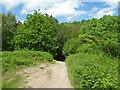 SO7639 : Descending from Swinyard Hill, Malvern Hills by Chris Allen