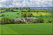 SO4033 : Newbrook Farm by Ian Capper