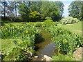 TR0660 : The Water Gardens at Mount Ephraim Gardens by Marathon