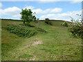 SO7639 : Shire Ditch on Hangman's Hill, Malvern Hills by Chris Allen
