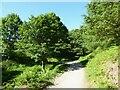 NY2724 : The Cumbria Way near Mallen Dodd by Adrian Taylor