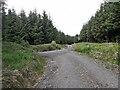 S3555 : Track Junction by kevin higgins