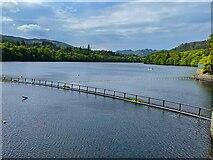 NN9357 : Loch Faskally by Graham Hogg