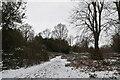 TQ5839 : Snowscene, Tunbridge Wells Common by N Chadwick
