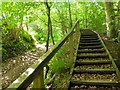 NT6419 : Wooden steps, Borders Abbeys Way by Jim Barton