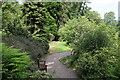 NT1635 : Path with Seat, Dawyck Botanic Garden by Billy McCrorie