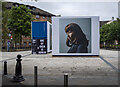 J3374 : 'One Of Them Is Human', Belfast by Rossographer
