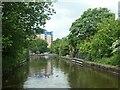 SJ7697 : Crane and stop planks, north of Barton Swing Aqueduct by Christine Johnstone