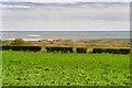 NU2409 : The North Sea Coast near Alnmouth by David Dixon