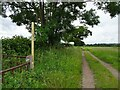 SO8497 : Monarch's Way View by Gordon Griffiths