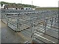 SN3040 : Newcastle Emlyn livestock market by Philip Halling