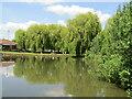TL1759 : St Neots - Riverside Park by Colin Smith