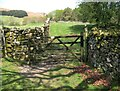 SD2789 : Gate on The Cumbria Way near Cockenskell by Adrian Taylor