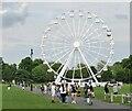 TL4558 : Cambridge - Ferris Wheel by Colin Smith