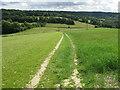 SU7395 : Footpath through crops, below Cowleaze Wood by David Hawgood